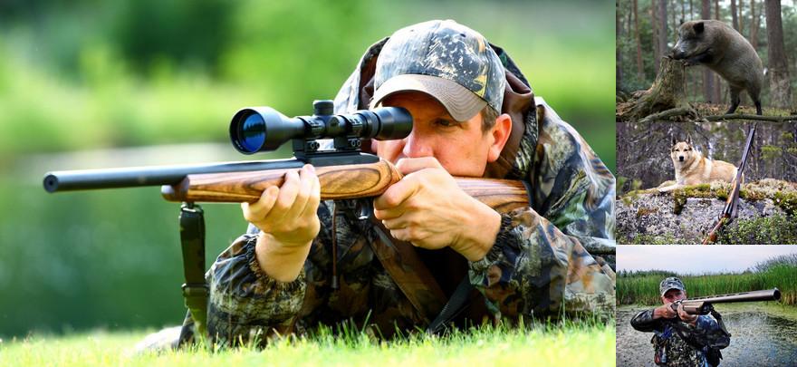 Картинки по запросу охота в беларуси